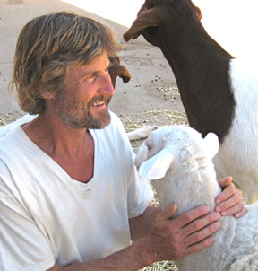 Dr. Will Tuttle with rescued sheep from animal Sanctuary